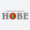 Logo hobe