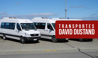 Daviddustand 01