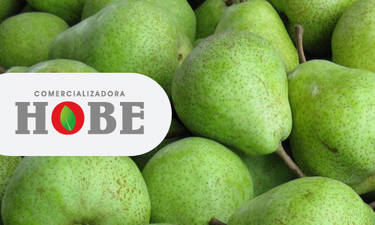 Hobe 01