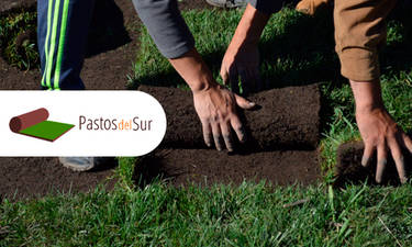 Pastosdelsur 01